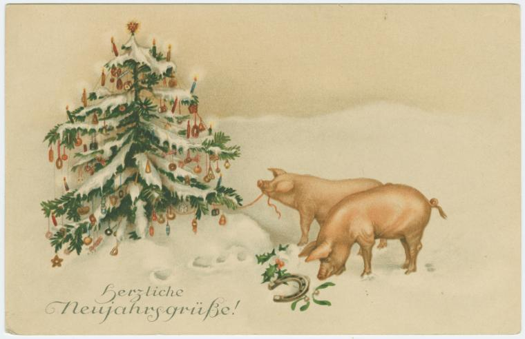 german-pig-nypl-digitalcollections-510d47e3-5292-a3d9-e040-e00a18064a99-001-w